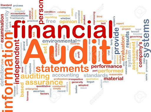 Audit Services in Turkey